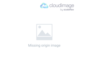 Downtown Orlando and Lake Eola area